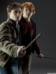 Harry and Ron MLS